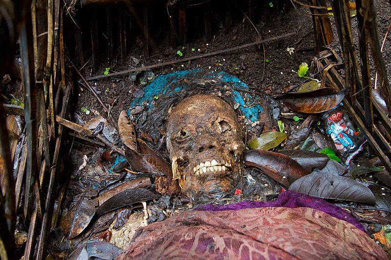 800px human skull trunyan bali