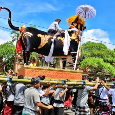 Bali 23