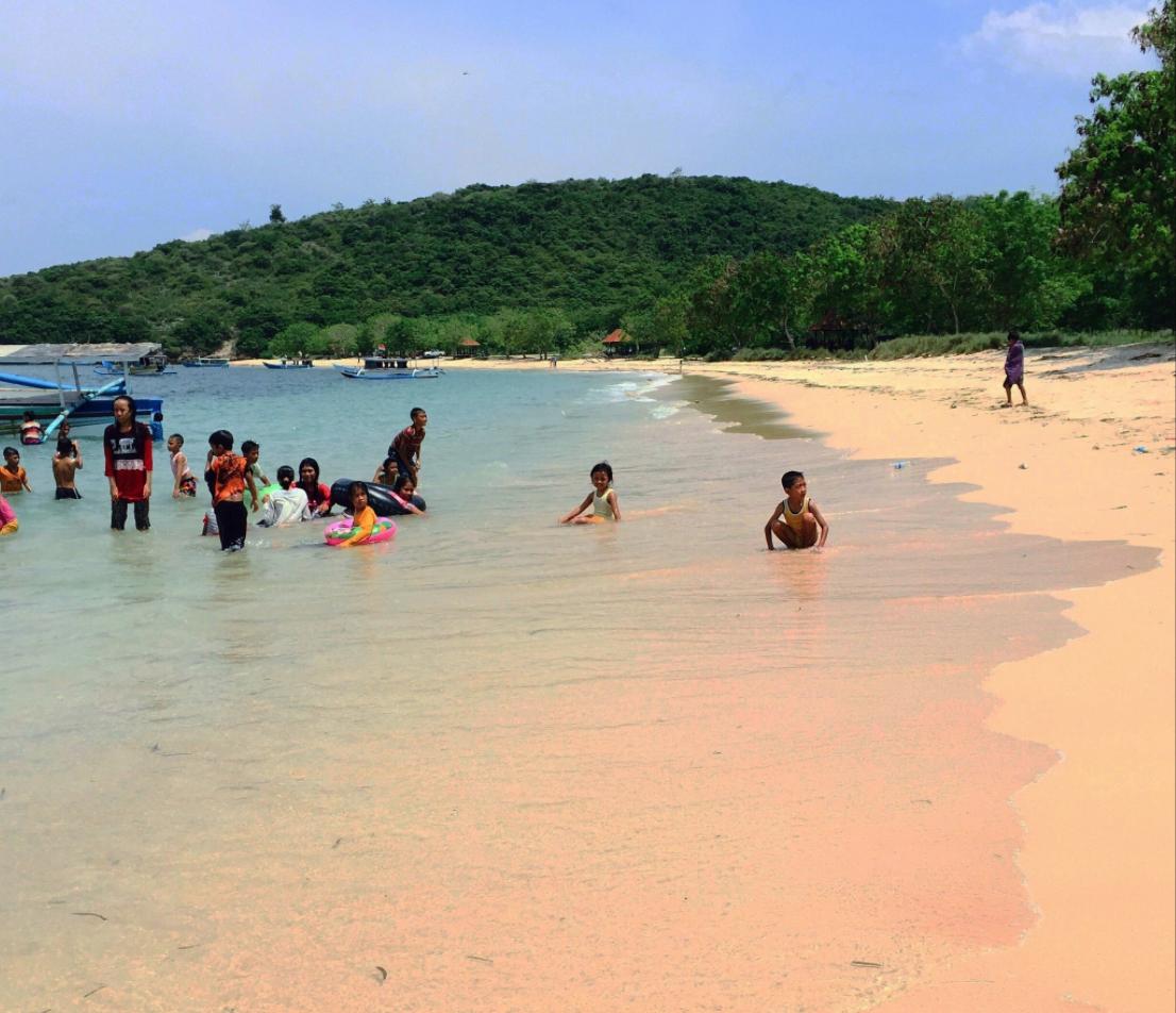 Pantai pink sekotong barat indonesia review tripadvisor