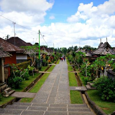 Penglipuran village 2
